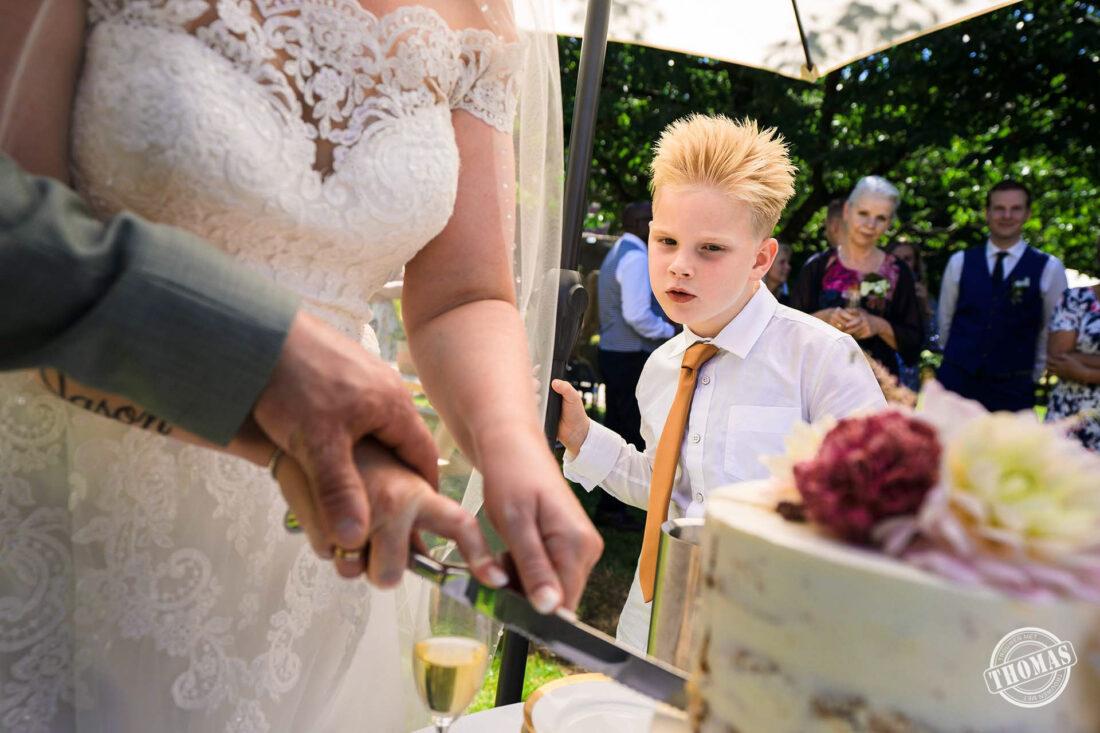 Kind kijkt naar snijden bruidstaart